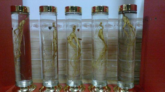 Sản phẩm bình thủy tinh ngâm rượu có bán tại cửa hàng